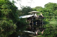 House on Stilts in the Waters of Costa Rica