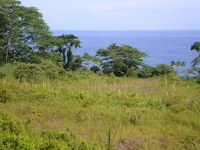 Limon Costa Rica Ocean View Property for Sale